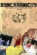 Eşzamanlılık (2008) afişi