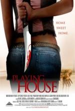 Evdeki Tehlike (2010) afişi