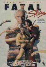 Fatal Skies (1990) afişi