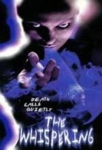 Fısıltılar (1995) afişi