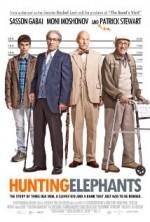 Filleri Yakalamak (2013) afişi