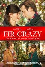 Çılgın Çamlar (2013) afişi