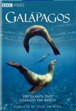 Galápagos (2006) afişi