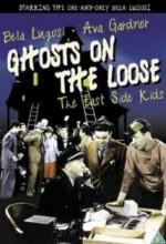Ghosts On The Loose (1943) afişi