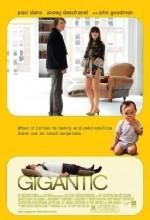 Gigantic (2008) afişi