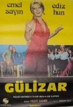 Gülizar (1972) afişi