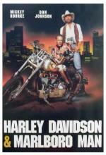Harley Davidson Ve Marlboro Adam (1991) afişi