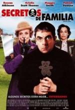 Hınzır Dadı (2005) afişi
