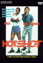 Hotshot (2001) afişi