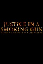 Justice in a Smoking Gun (2015) afişi