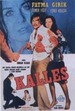 Kalleş (1974) afişi