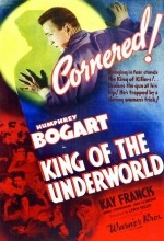King Of The Underworld (1939) afişi
