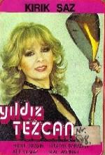 Kırık Saz (1966) afişi