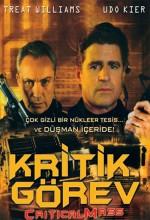 Kiritik Görev (2009) afişi