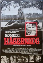 Komedi I Hägerskog (1968) afişi