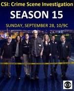 Kanıt Peşinde Sezon 15 (2015) afişi