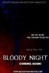 Kanlı Gece (2013) afişi