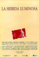 La Herida Luminosa (ı) (1997) afişi