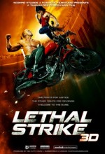 Lethal Strike 3d (2010) afişi