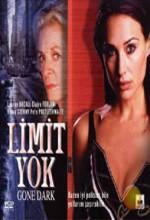 Limit Yok (ı) (2003) afişi