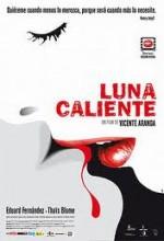 Luna Caliente (2009) afişi
