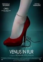 Kürklü Venüs (2013) afişi