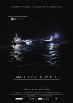 Lampedusa'da Kış (2015) afişi