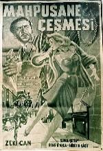 Mapushane çeşmesi (1964) afişi