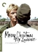 Mutlu Noeller Bay Lawrence