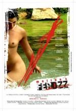 Molina's Ferozz (2010) afişi