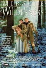 Mucize ve Wilderness (1992) afişi