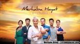 Merhaba Hayat (2012) afişi