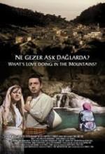 Ne Gezer Aşk Dağlarda? (2005) afişi