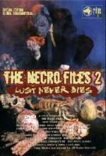 Necro Files 2 (2003) afişi