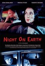 Dünyada Bir Gece (1991) afişi