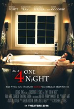 Only for One Night (2016) afişi