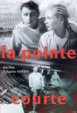 Paralel Yaşamlar (1955) afişi