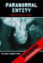 Paranormal Entity (2009) afişi