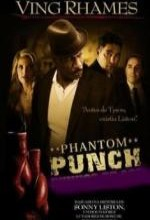 Phantom Punch (2009) afişi