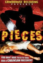 Pieces (2007) (2007) afişi