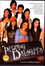 Pitong Dalagita (2006) afişi