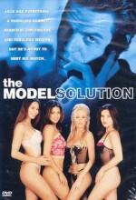 Playboy Model Çözümleri (2002) afişi