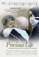 Precious Life (2010) afişi