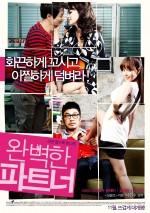 Perfect Partner (2011) afişi