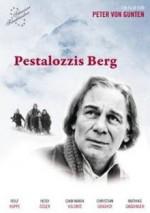 Pestolazzis Berg (1989) afişi