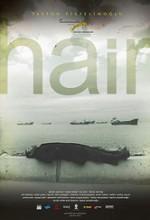 Saç (2010) afişi