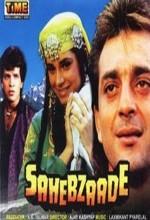 Sahebzaade (1992) afişi