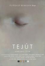 Samanyolu (2007) afişi