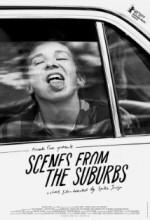 Scenes From The Suburbs (2011) afişi