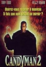 Şeker Adamın Laneti 2 (1995) afişi